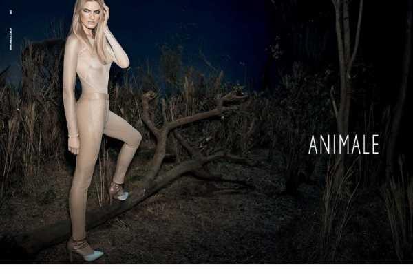 animale-ss-2013-5