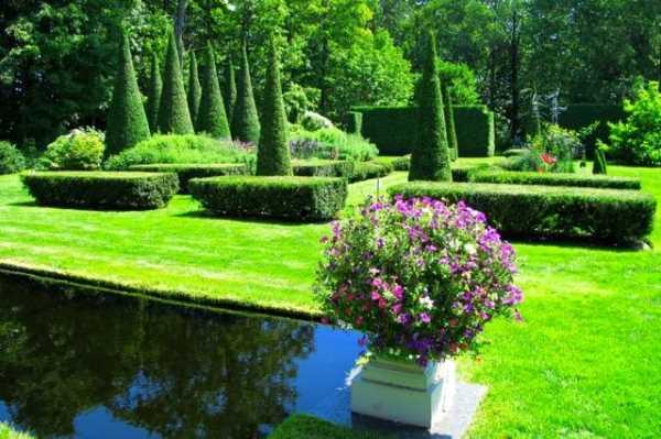 Идеи для украшения сада