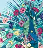 nadia-flower-vector4