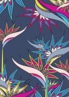 nadia-flower-vector5