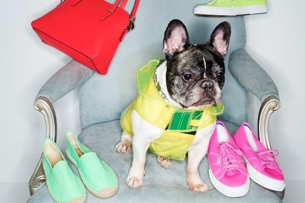 Стильные аксессуары весна 2014 от Shopbop