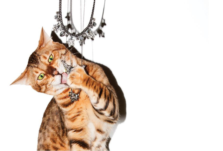 Праздничная коллекция украшений от Juicy Couture