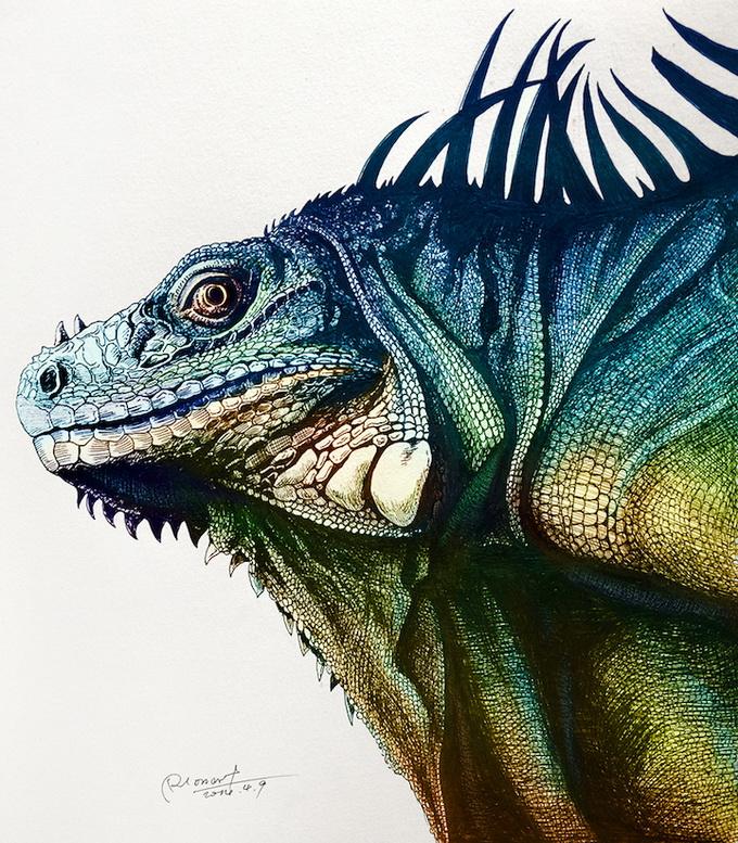 Иллюстратор RLoN Wang