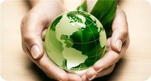 ekologichnaya-byitovaya-himiya